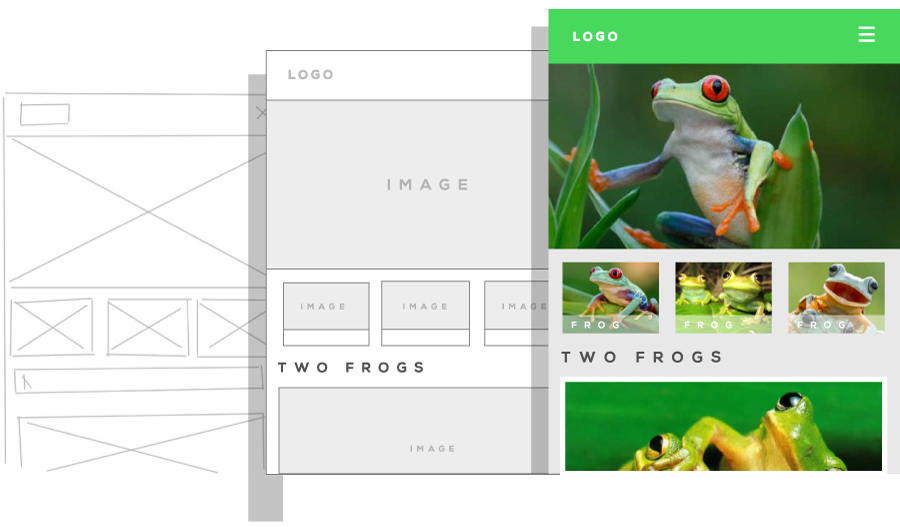 Frogs over web theme